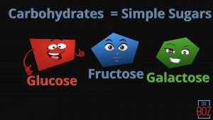 Carbohydrates = Simple Sugars